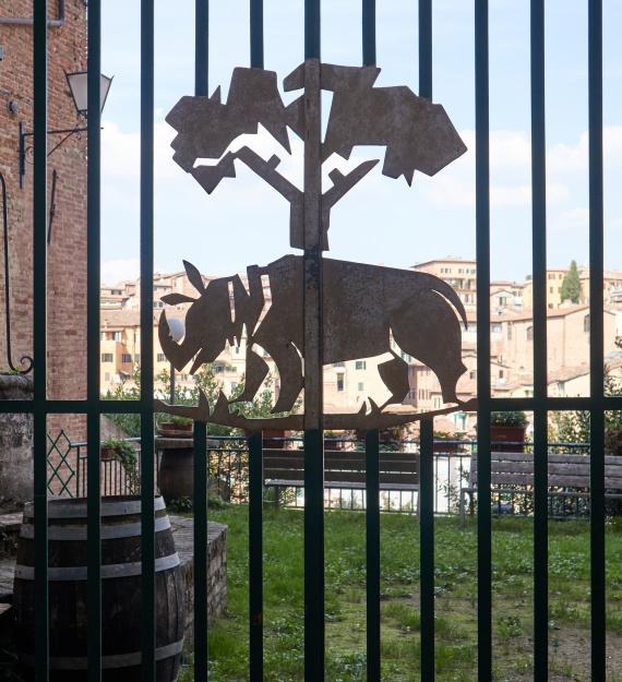 Siena visita con guia 2020