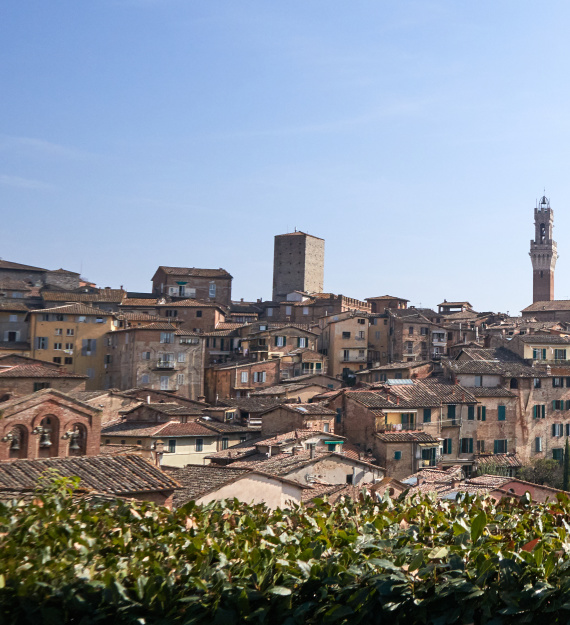 Siena walking tour 2020