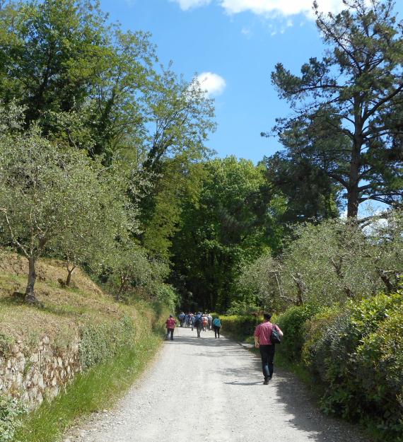 Hiking in Tuscany b
