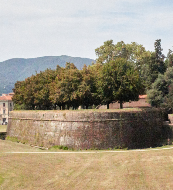 Puccini mura