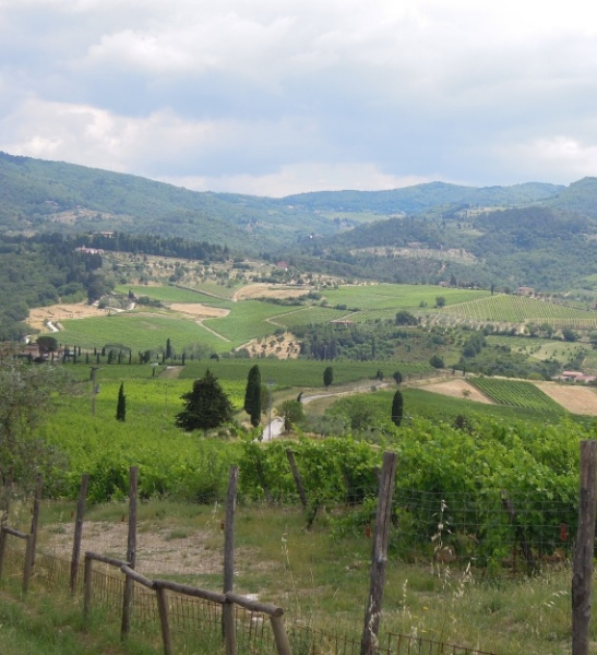chianti-resized-2