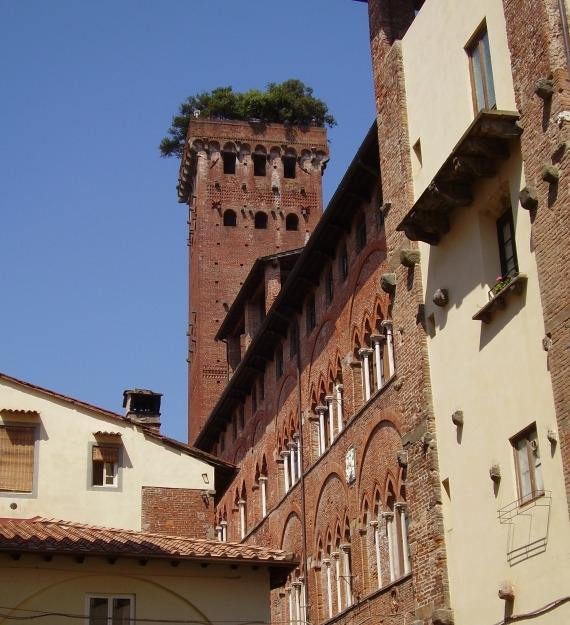 torre.guinigi.scorcio3 resized
